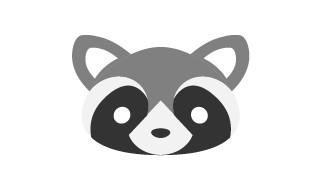 Raccoon Graphic